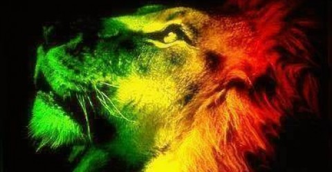 REGGAE IS A LIFESTYLE